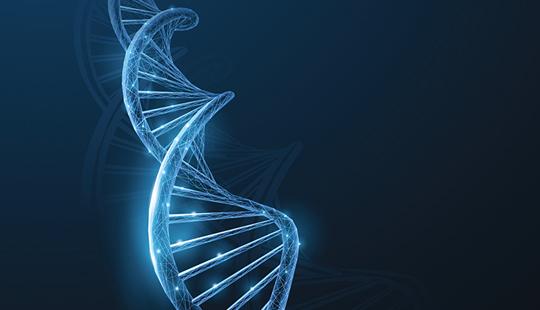 Helix_DNA